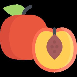 Peach / Apricot